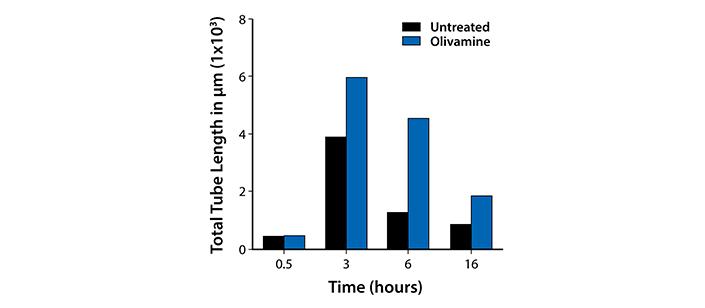 Anti-Diabetic Effects Figure 4