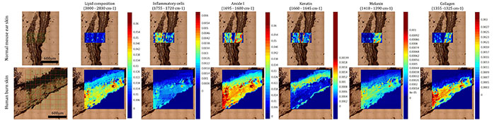 Infrared Mapping Results A
