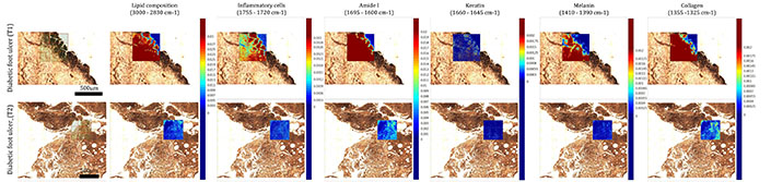Infrared Mapping Results D